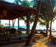 sea-view-resorts-mandrem-goa-tandoori-bpcqr5